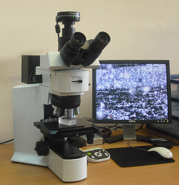 Optical microscope Olympus BX51M